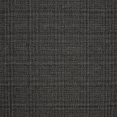 "Sunbrella® Fusion Upholstery 54"" Chapman Char 44296-0001"
