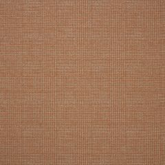 "Sunbrella® Fusion Upholstery 54"" Chapman Rust 44296-0003"