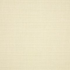 "Sunbrella® Fusion Upholstery 54"" Boss Tweede II Salt 45893-0003"
