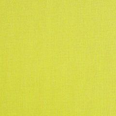 "Sunbrella® Fusion Upholstery 54"" Trax Linden 40046-0055"