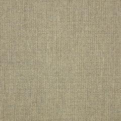 "Sunbrella® Elements Upholstery 54"" Sailcloth Shadow 32000-0025"