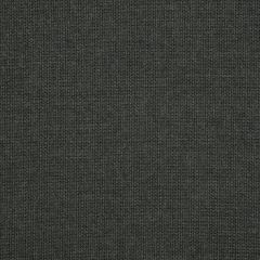 "Sunbrella® Elements Upholstery 54"" Spectrum Carbon 48085-0000"