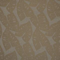 """Sunbrella® Shift Upholstery 54"""" Radiant Dune  69008-0001"""