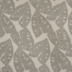 "Sunbrella® Shift Upholstery 54"" Radiant Silver  69008-0000"