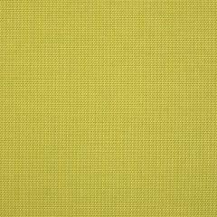 """Sunbrella® Shift Upholstery 54"""" Spotlight Citron  15000-0008"""