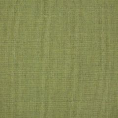 "Sunbrella® Pure Upholstery 54"" Cast Moss 48109-0000"