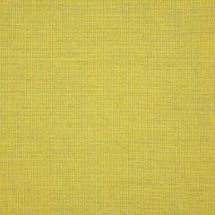 "Sunbrella® Pure Upholstery 54"" Cast Citrus 48112-0000"