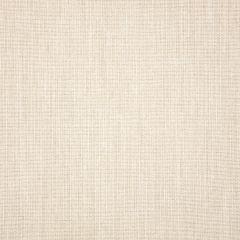 "Sunbrella® Pure Upholstery 54"" Cast Pumice 48114-0000"