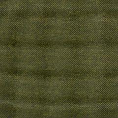 "Sunbrella® Pure Upholstery 54"" Essential Pine 16005-0012"