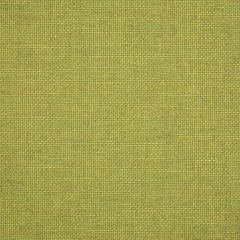"""Sunbrella® Pure Upholstery 54"""" Essential Lime 16005-0013"""