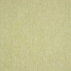 "Sunbrella® Pure Upholstery 54"" Platform Aloe 42091-0015"