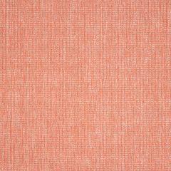"Sunbrella® Pure Upholstery 54"" Platform Coral 42091-0016"
