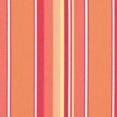 "Sunbrella® Elements Upholstery 54"" Dolce Mango 56000-0000"