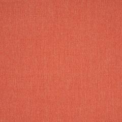 """Sunbrella Emerge 57013-0000 54"""" Canvas Persimmon"""