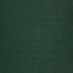 "Sunbrella® Sling Upholstery 54"" Basis Ivy 6718-0013"
