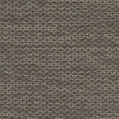 """Sunbrella® Sling Elite Upholstery 54"""" Igneous Granite 5288-0005"""