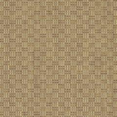 """Sunbrella® Sling Elite Upholstery 54"""" Calvin Spice 5301-0006"""