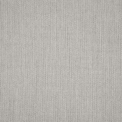 "Sunbrella® Sling Upholstery 54"" Augustine Silver 5928-0044"
