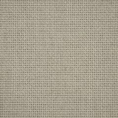 """Sunbrella® Sling Upholstery 54"""" System Dune 50198-0001"""