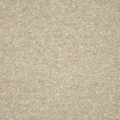 "Sunbrella® Sling Upholstery 54"" Surface Sand 5324-0002"