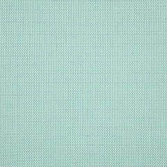"Sunbrella® Sling Upholstery 54"" Augustine Frost 5928-0039"