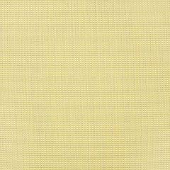 "Sunbrella® Sling Upholstery 54"" Augustine Pear 5928-0040"