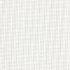 "AwnTex 70 Screen and Mesh 60"" White OC2 17x11"