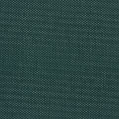 "Phifertex Plus Upholstery 54"" Holly Green CL1 42x12"