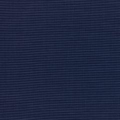 "Phifertex Plus Upholstery 54"" Dupione Sapphire L96"