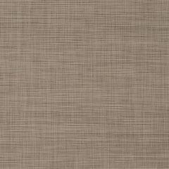 "Phifertex Olefin/PVC Blend Upholstery 54"" Crystal Linen Ash NC4"