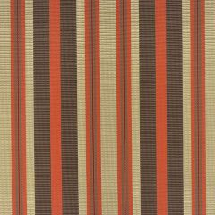 "Phifertex Stripes Upholstery 54"" Santiago Stripe KG3 42x14"