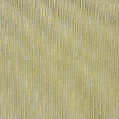 "Phifertex Plus Upholstery 54"" Spring Tweed Citronelle DAV 42x14"
