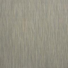 """Phifertex Plus Upholstery 54"""" Spring Tweed Silver YHM"""
